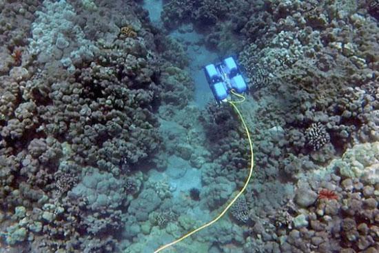 روباتی که قادر به کاوش در اعماق آب است!