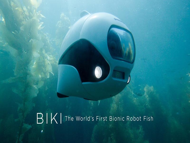 روبات بیسیم که با استفاده از باله شنا میکند