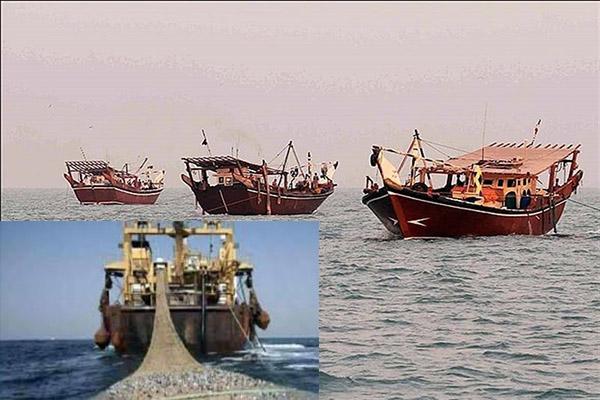 کشتیهای بزرگ صید صنعتی و ترال در سیستان و بلوچستان وجود ندارد