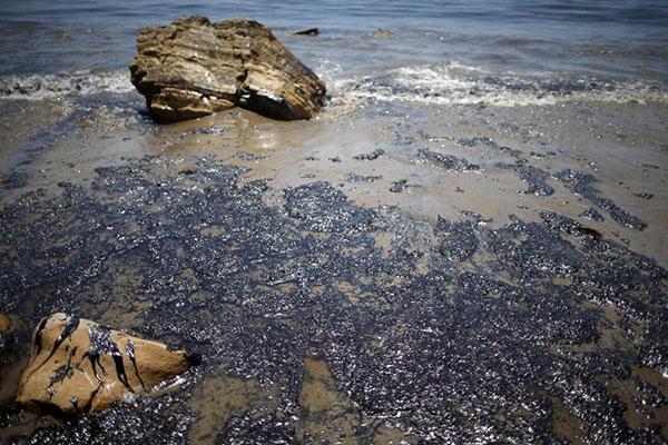 حذف آلایندههای نفتی با باکتریهای اصلاحشده با نانوذرات