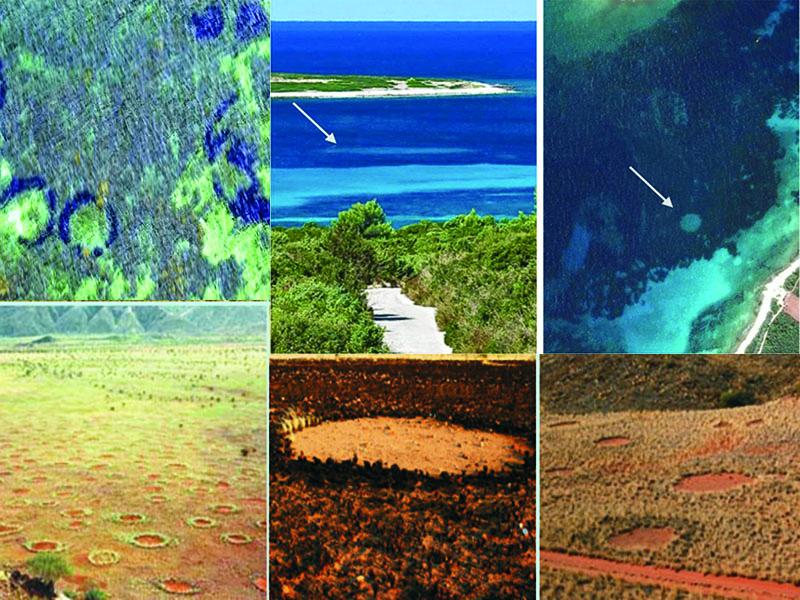 علت حلقههای اسرارآمیز جنوب آفریقا و دریای مدیترانه کشف شد